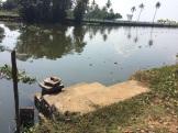 Descente vers le canal Kumarakom