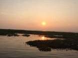 Lac Vembanad