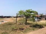 Linge à sécher, Colombo