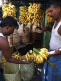 Préparation des bananes pour la vente, Madurai