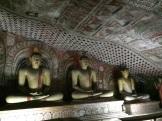 Bouddhas au Golden Temple
