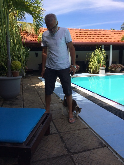 Robert et son ami le chat à Suriyagaha