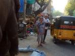 Éléphant devant le temple à Puducherry
