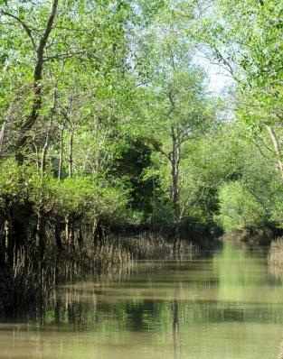 Ballade sur un petit canal, région de An Binh, Vietnam