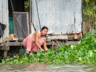 La vie en bordure du Mékong, Chau Doc, Vietnam