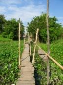 Chemin suspendu au dessus de l'eau menant vers le village Cham, région Chau Doc, Vietnam