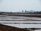 Marais salant, Kampot, Cambodge