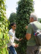 Robert et notre chauffeur de tuk tuk dans la plantation de poivre, Starling Farm, Kampot, Cambodge