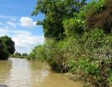 Canal menant à Battambang, l'eau devient moins profonde et plus brune, Cambodge
