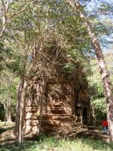 Temple parmi les arbres, Sambor Pre Kuk, Cambodge