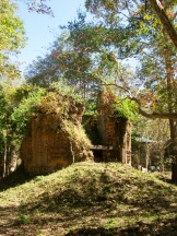 Temples sous la végétation, Sambor Pre Kuk. Cambodge