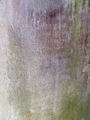 Texte rédigé en sanscrit autour du 7e siècle dans un temple de la même époque, Sambor Pre Kuk, Cambodge