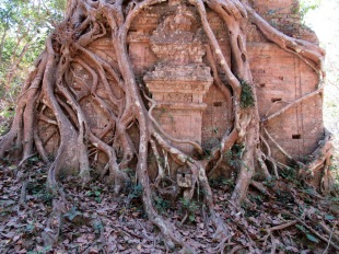 Un bijou dans un écrin naturel, Sambor Pre Kuk, Cambodge