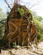 Sambor Pre Kuk, un voyage dans le temps, Cambodge