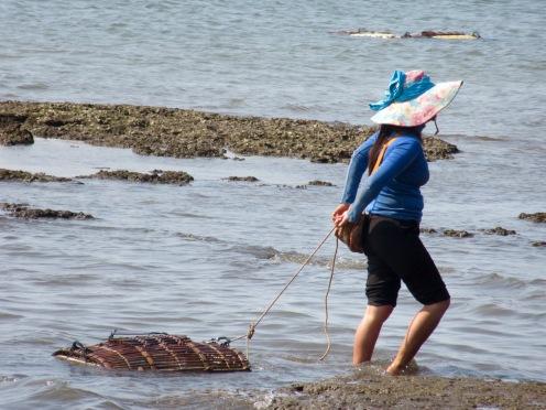 Une jeune femme tire une cage de crabe hors de l'eau près des restaurants à Kep, Cambodge