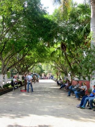 Les bancs de parc du Zocalo accueillent des gens de tous les âges pour faire un brin de jasette, pour profiter de la fraîcheur des arbres ou simplement surfer sur internet 'Inalámbrico'. Mérida, Yucatán, Mexique.