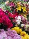 Pas facile de choisir. Cette fois-ci, j'opterai pour des fleurs très parfumées. Marché Ignacio Ramírez, San Miguel de Allende, Mexique.