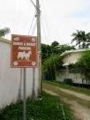Parfois, il suffit de peu pour se sentir dans un autre espace temps! Belize City, Belize District, Belize.