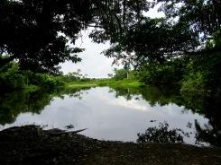 Le fond de la principale source d'eau de Altun Ha aurait été recouvert d'argile jaune afin de ralentir l'écoulement de l'eau de pluie plus longtemps. Belize District, Belize.