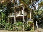 Déguster un café frais moulu, assis sur le balcon à travers les arbres: une petite pause bien appréciée. Placencia, Stann Creek District, Belize.