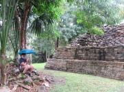 Lubaantun sous la pluie. Nous avons dû nous réfugier sous les arbres. Même avec nos parapluies, la pluie était trop forte. Toledo District, Belize.