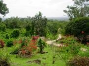 Vue à partir de l'accueil du site. Nim Li Punit est située tout en haut de la montagne, elle était un centre important pour les activités religieuses et politiques. Toledo District, Belize.