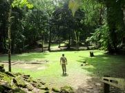 Dès notre arrivée à Nim Li Punit, nous avons été charmés par l'intensité des verts de la nature. Toledo District, Belize.