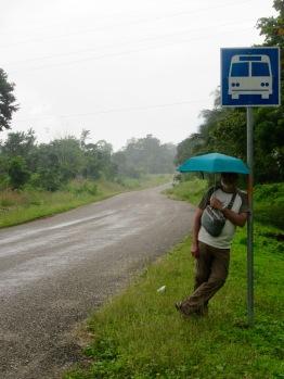 En attendant l'autobus après la visite de Nim Li Punit. La pluie tombe tous les jours et heureusement, nous traînons toujours notre parapluie. Toledo District, Belize.