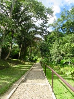 Entrée qui mène à Lubaantun, sous un soleil radieux, au cœur de la jungle. Toledo District, Belize.
