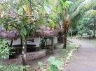 Ak'Tenamit, l'école dans la jungle dans la région du Rio Dulce, tient un restaurant pour les touristes, le Café Tatin. Il était fermé lors de notre visite en raison des vacances de Noël. Guatemala.
