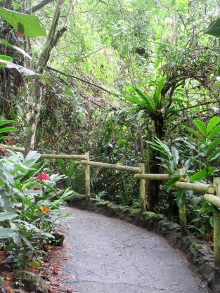 Un chemin bien balisé mène aux différentes sections de l'école dans la jungle à Ak'Tenamit, près de Livingston. Guatemala.