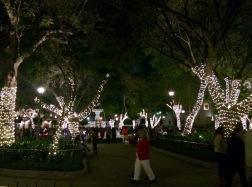 El Parque Central la nuit. Est-ce qu'il est décoré ainsi pour la période des Fêtes ou est-ce son allure habituelle? Je n'en sais rien, mais j'en ai profité car il est tout simplement grandiose. Antigua, Guatemala.