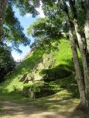 Des escaliers de bois ont été construits pour accéder aux principaux temples de Tikal: el Templo II, el Templo IV et el Gran Piramide du Mundo Perdido. Petén, Guatemala.