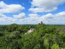 Les temples principaux de Tikal sont visibles au dessus de la jungle du Petén. Nous pouvons les imaginer peints de couleurs bleues, rouges ou jaunes. Impressionnant, non? Guatemala.