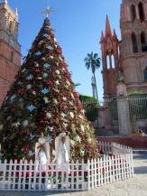 L'incontournable arbre de Noël devant la Parroquia, San amiguel de Allende, Guanajuato, Mexique.
