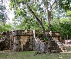 La nature reprend ses droits à chaque fois qu'elle en a la chance. Chichen Itzà est entourée d'une forêt et une partie de ses constructions anciennes n'a pas été mise à jour. Yucatán, Mexique.