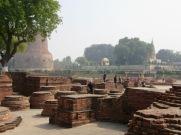 Il fait bon se promener à travers les ruines du site archéologique de Sarnath, Inde.