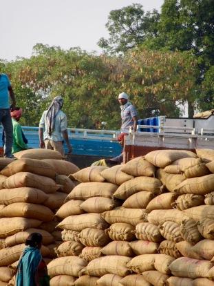 Des hommes vident un camion de sacs de riz près d'une gare en Inde.