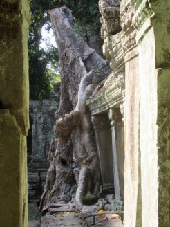 Preah Khan, Siem Reap, Cambodge.