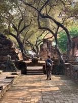 Un moment reposant au Wat Phra Si Sanphet, Ayutthaya, Thaïlande.